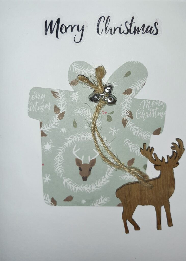 This image has an empty alt attribute; its file name is The-Reindeer-Gift-730x1024.jpeg